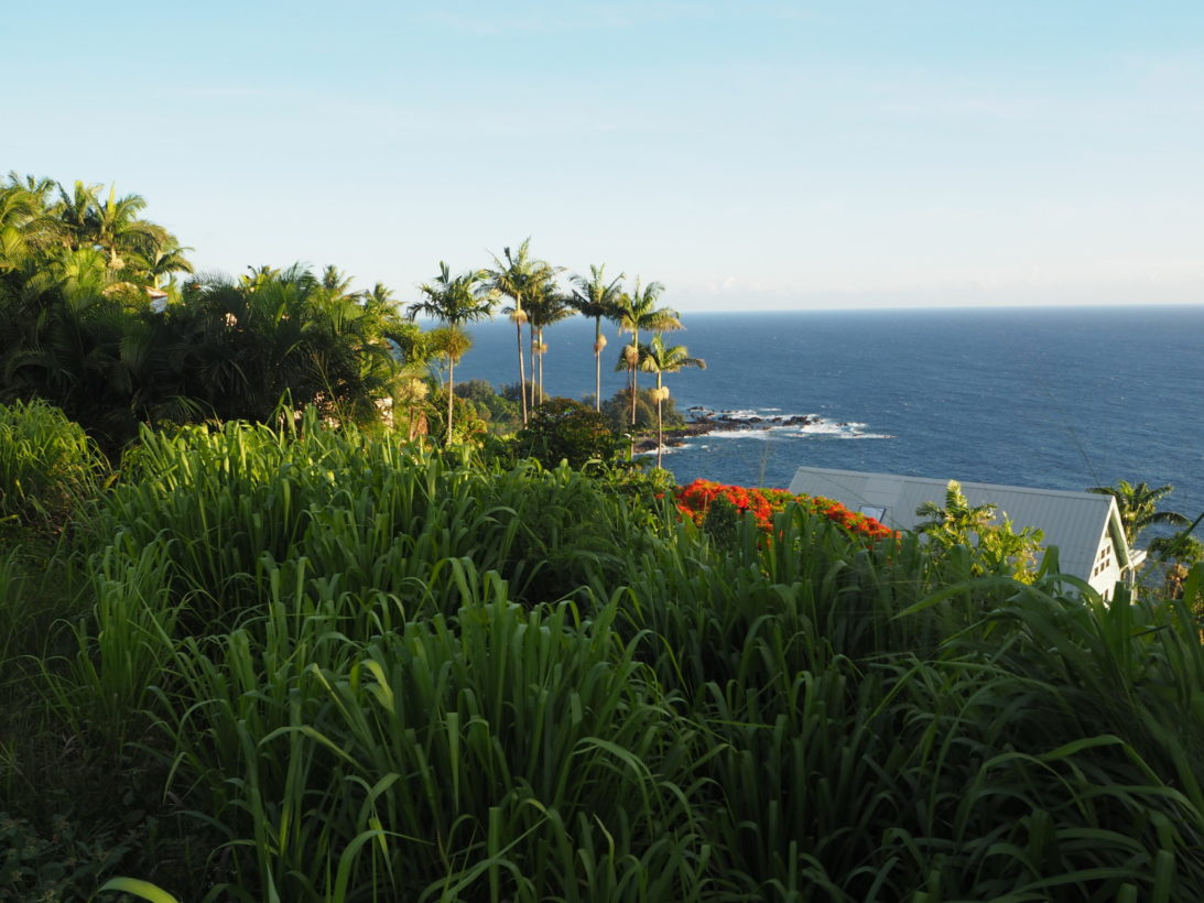 Hawaii Reisebericht Ostküste Oahu