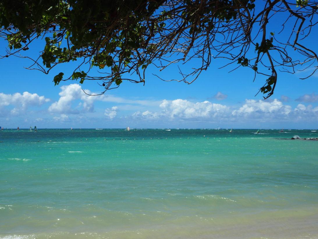 Windsurfen auf Maui