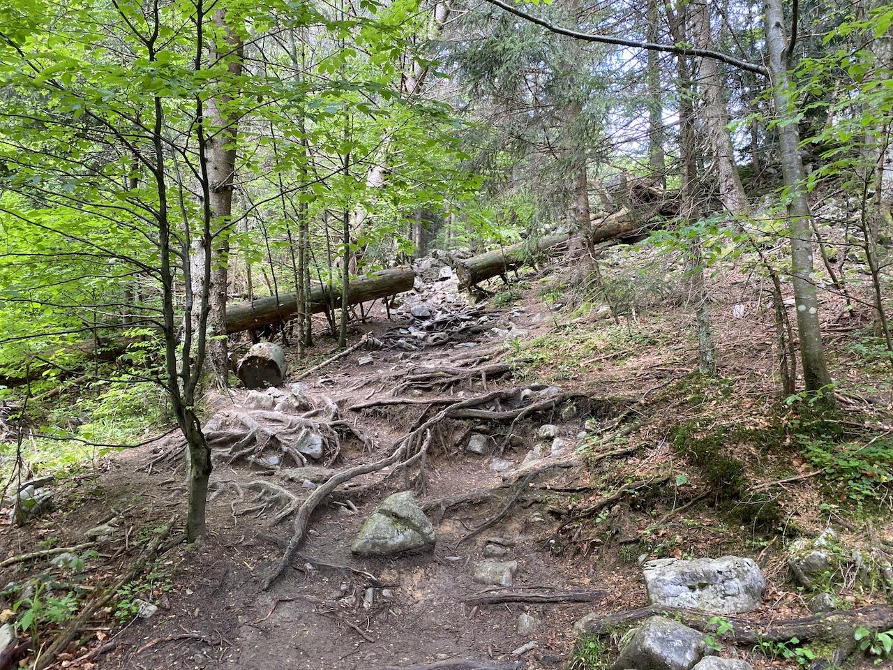 Wanderung Heuberg